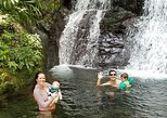 Private Full Day Archaeological and Rainforest Tour in San Juan