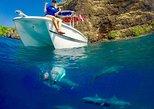 USA - Hawaii: Kona Private Charter Ocean Adventure