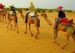 Half Day Overnight Camel Safari (Non Touristic)