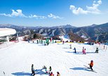 Elysian Ski with Nami Island One Day Tour