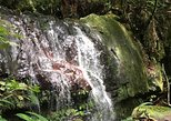 Full-Day Rainforest and Waterfall Adventure from San Juan