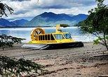 Hovercraft Eco Adventure & Wildlife Viewing