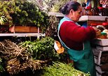Private Sightseeing Tour Historic Centre Quito and 2 traditional markets