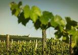 Full-day tour of Tokaj - The World's First Closed Wine Region