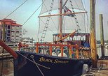 1.5-Hour Pirate Ship Dolphin Tour from Hilton Head