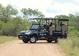 Kruger Park Full-Day Private Safari