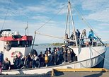 Island Hopping on a Classic Norwegian Fishing Boat from Stavenger