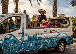 Skyline Private Tour by City Van