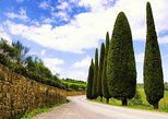 Taste of Chianti: Tuscan Cheese, Wine and Lunch from Florence