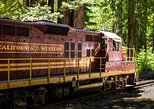 Skunk Train: Northspur Flyer from Willits