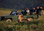 2 Day Safari Experience