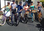 The Dalai Lama Tour (electric bikes)