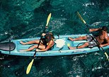 Snorkel, Kayak and Dolphin Experience in the Big Island's Kealakekua Bay