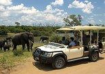 Chobe day trip ex Livingstone