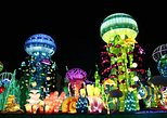 Glow Garden Tour Evening Time &Two Way Transfers