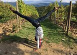 Half-day Chianti wine tour of 3 wineries from Florence