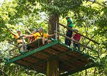 Adrena-Line Zipline Canopy Tour at Rainforest Adventures