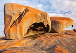 Flinders Chase Focus - Full Day Kangaroo Island Wildlife Tour