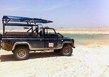 Desert Safari and Dead Sea Day Trip from Tel Aviv