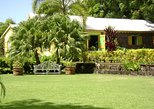 St. Kitts Shore Excursion: Panoramic Tour with Optional Brimstone Hill Fortress Visit