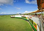 St Kitts Scenic Train Tour (Reconfirm 48hrs)