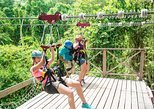St Kitts Zipline Canopy Tour (Reconfirm 48 hours)