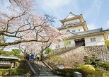 Historical Castle & Shinto Shrine Tour