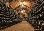 Cavas Freixenet Wine Tour from Mexico City