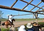 South America - Argentina: Day Ranch and Fiesta Gaucha in Santa Susana Ranch