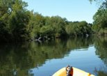 Guided Kayak Tour on Jenner Coast
