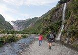 Franz Josef Glacier Valley Eco Tour