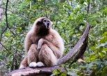 Monkeyland Guided Tour in Plettenberg Bay