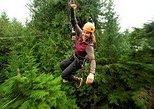 Ketchikan Shore Excursion: Rainforest Canopy Ropes and Zipline Adventure Park