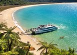 Abel Tasman National Park Cruise and Forest Walk
