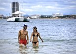 Snorkel & BBQ Beach Party
