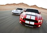 American Muscle Car Driving Experience