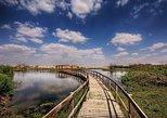 A fun Day in Azraq Wetland Natural reserve