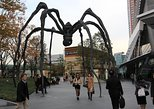 Expert-Led Tour of Tokyo: Japanese Aesthetics