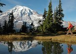 USA - Washington: Best of Mt Rainier National Park from Seattle: All-Inclusive Small Group Tour.