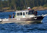 Canada - British Columbia: Ultimate Marine Whale & Wildlife Tour