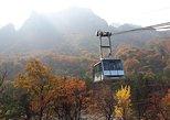 Mount Seorak and Nami Island Day Trip from Seoul