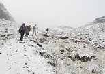 Los Nevados National Park 3-Day Trip from Salento
