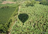 Hot Air Balloon Flight over the Colombian Coffee Region