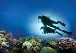 Discover Scuba Diving Course at Puerto Morelos National Marine Park