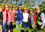 Swan Valley Tour from Perth: Wine, Beer and Chocolate Tastings