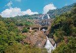 Private Tour: Jungle Adventure from Goa