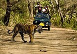 Luxury Golden Triangle with Ranthambore Wildlife Safari