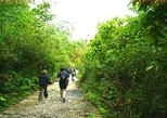 Cat Ba National Park Trekking Full Day from Cat Ba Island