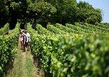 Excursão de vinhos Bordeaux Medoc com almoço e St Emilion. Bordeaux, FRANCIA
