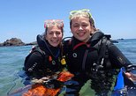 Lanzarote Introductory Scuba Diving Experience
